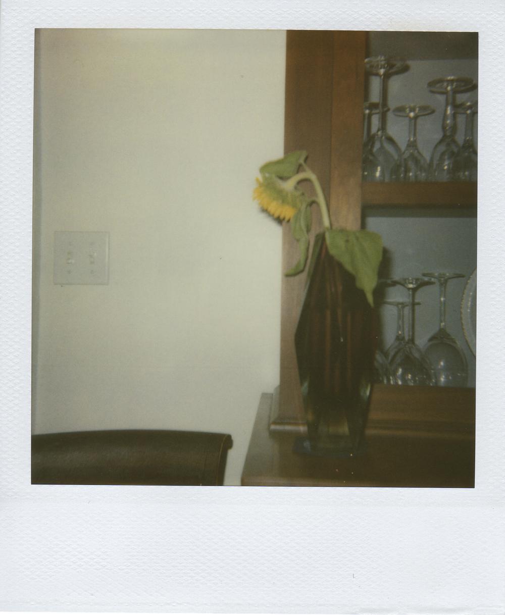 jlaurence-polaroid-116.jpg