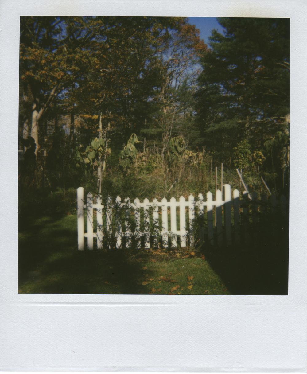 jlaurence-polaroid-133.jpg