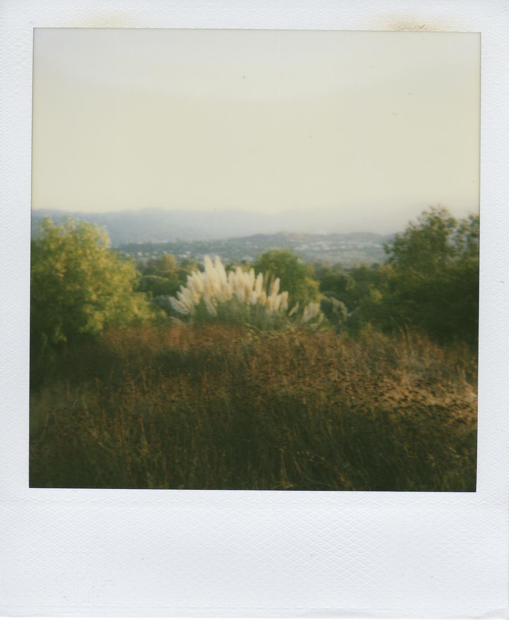 jlaurence-polaroid-135.jpg