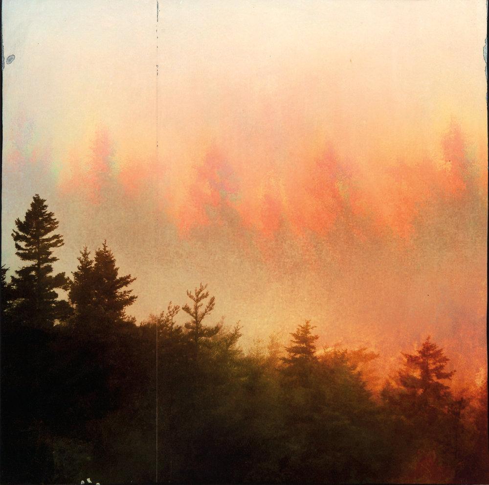 Laurence-Sherbert Sky.jpg
