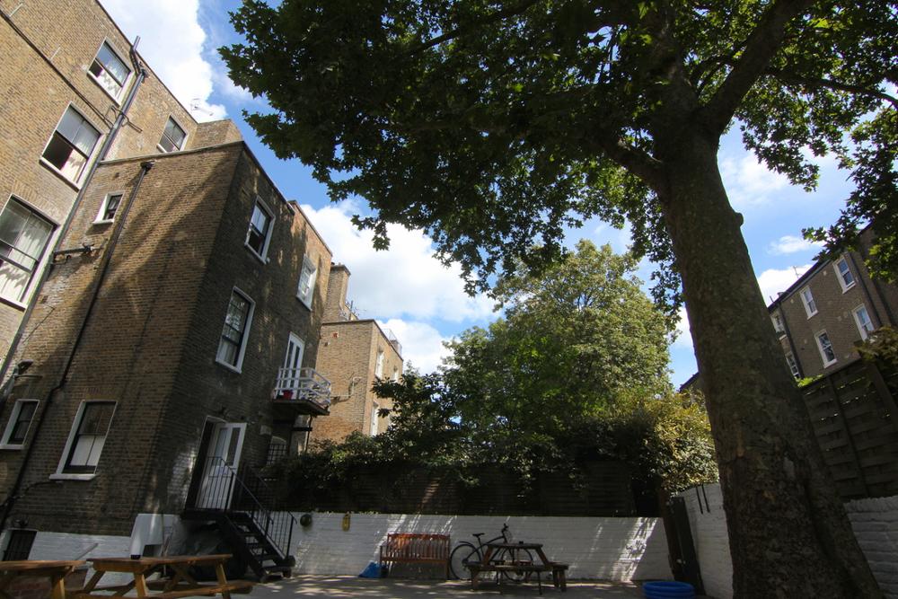 hostel-garden-tree-3.jpg