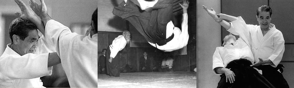Aikido-Header.jpg