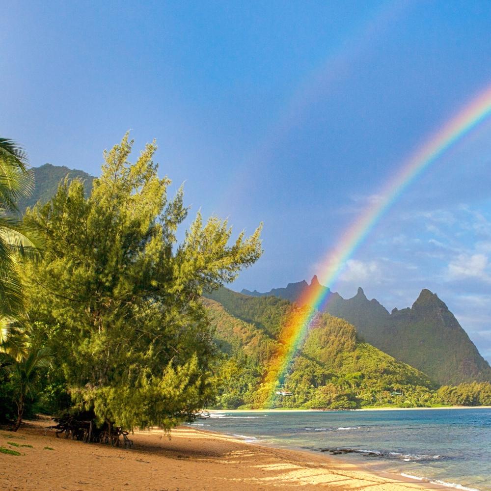 o-HAWAII-RAINBOW-facebook.jpg