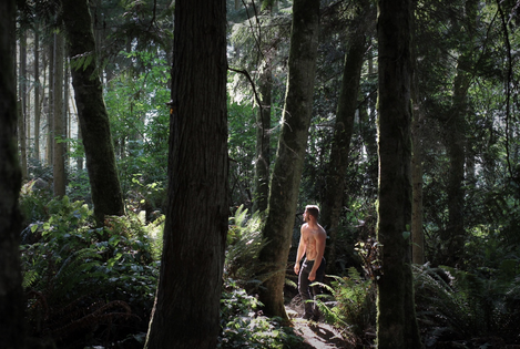 Some hikes may take you through a wooded forest...