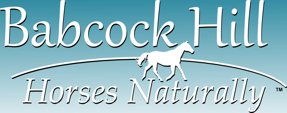 Babcock Hill Horses Naturally LLC