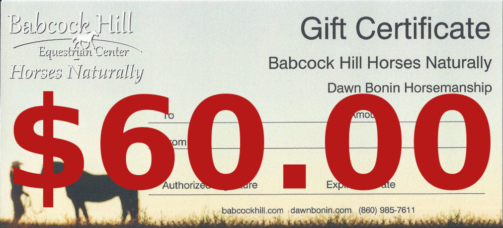 $60 Gift Certificate  - Covers 1 Lesson with Instructor on a lesson horse