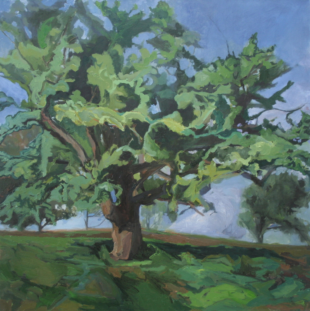 """Dorothy Frey , """"Cavalier"""" oil on canvas, 36""""x36"""" (retail value $2600)"""