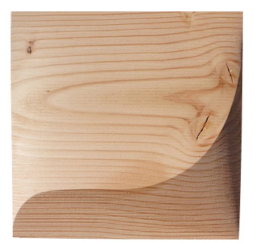 CNC routed recycled wood panels were added to the wall to encourage organic growth.