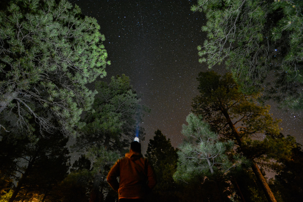 Collin Reed Photography Star Flagstaff
