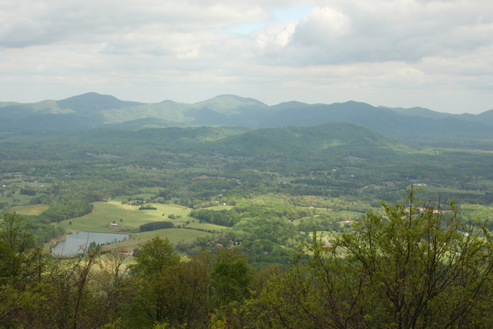 Blue Ridge Mountains, Virginia, May 2012.  (Photograph by Michael Riddle.)