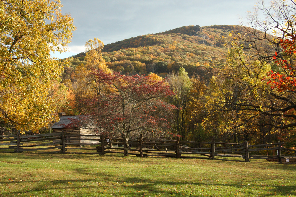 Blue Ridge Mountains, Virginia, October 2011.   (Photograph by Michael Riddle.  )