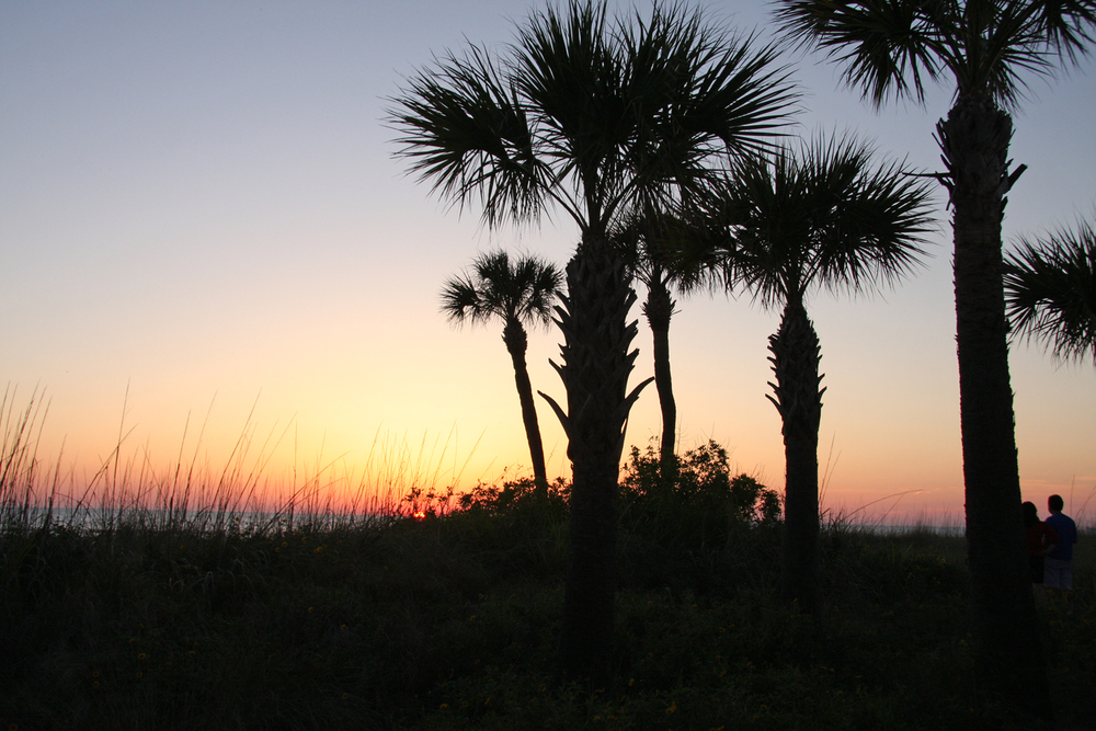 St. Pete Beach, Florida, May 2011.     (Photograph by Michael Riddle.  )