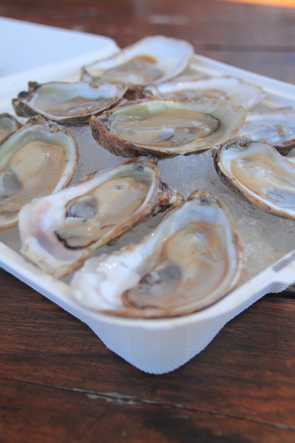 OystersRichardsSeafood