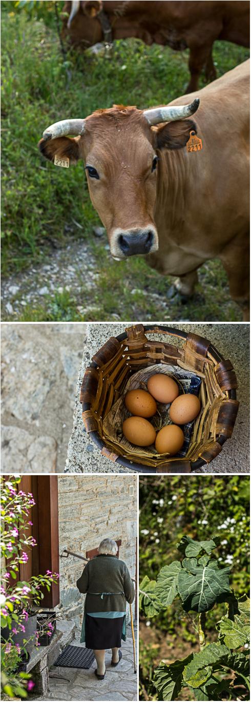 Galicia Village Textures © 2013 Helena McMurdo