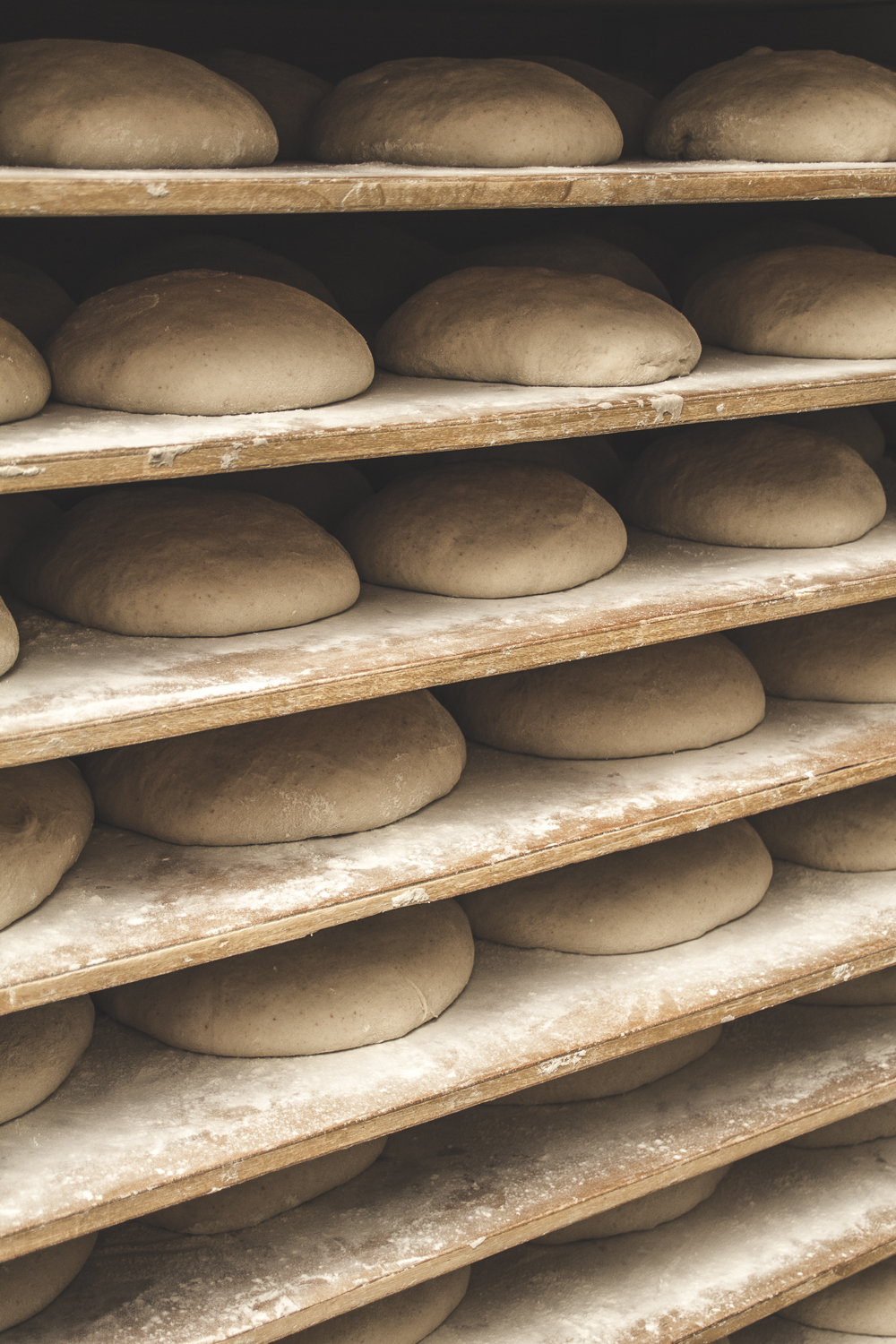 Proofing the Loaves © 2014 Helena McMurdo
