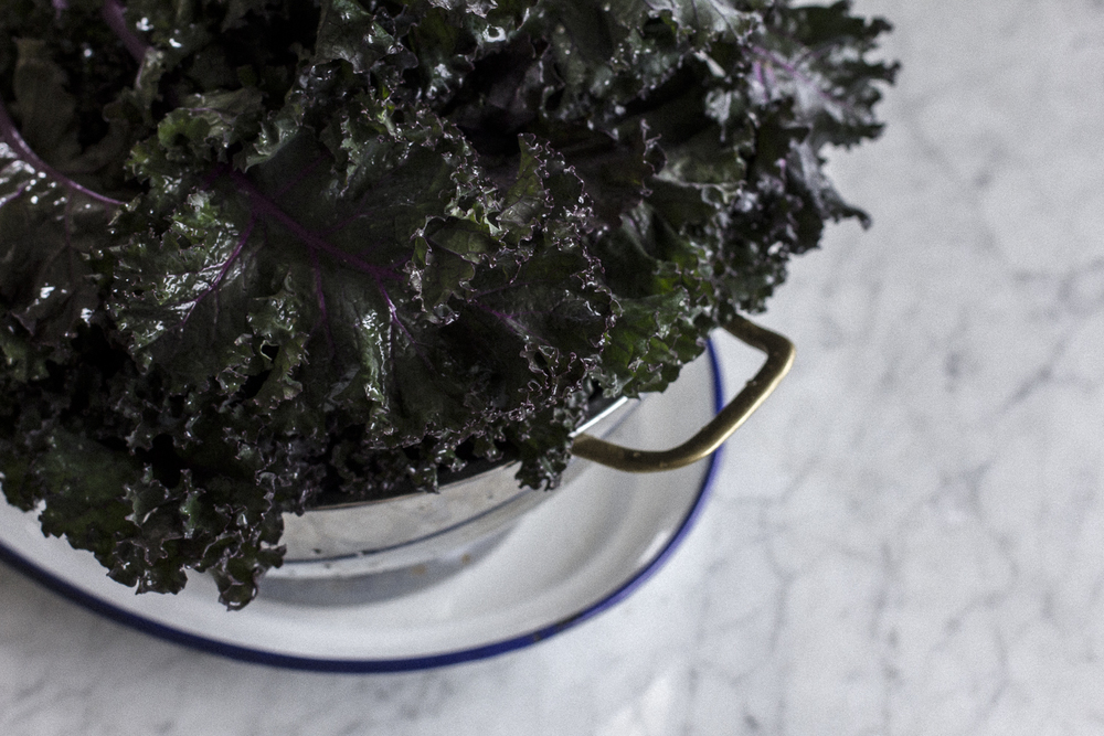 Kale. Helena McMurdo Photography on Endless Picnic.