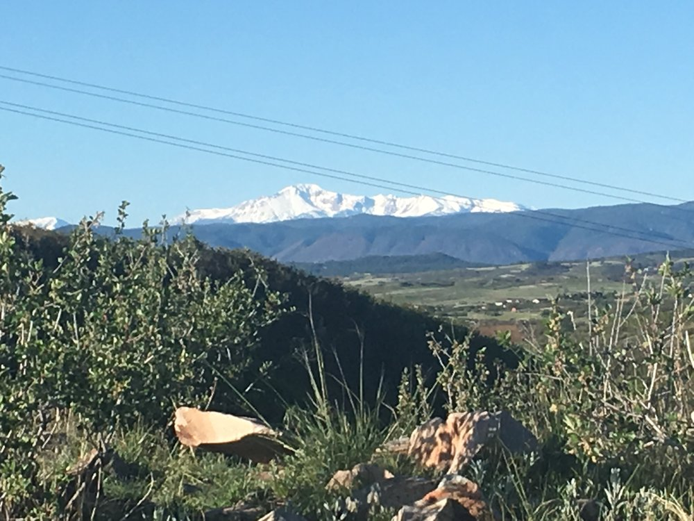 View of Pikes Peak from the trail!
