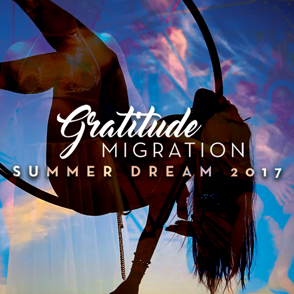 GRATITUDE MIGRATION -
