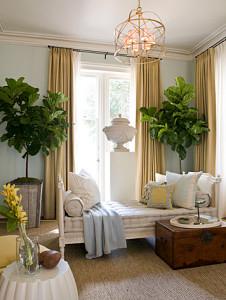 http://www.thenakeddecorator.com/2013/05/10/why-we-love-fiddle-leaf-fig-trees/fiddle-leaf-dc-design-house/