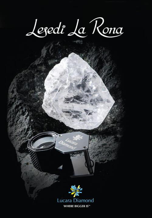 Lesedi La Rona logo and image.jpg