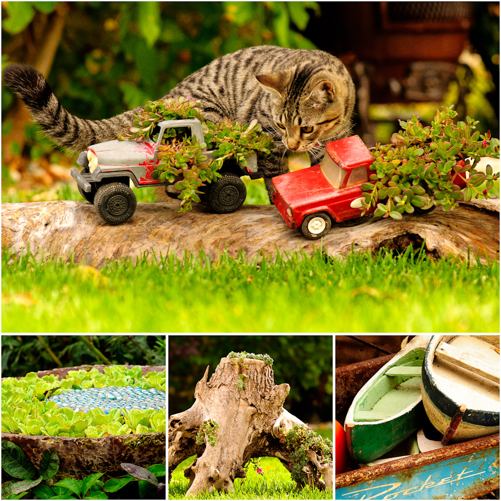 Patti Brisebois' Manitoba zone 3 garden. Patti's plantings are very creative and include old toy trucks, tree stumps and driftwood.