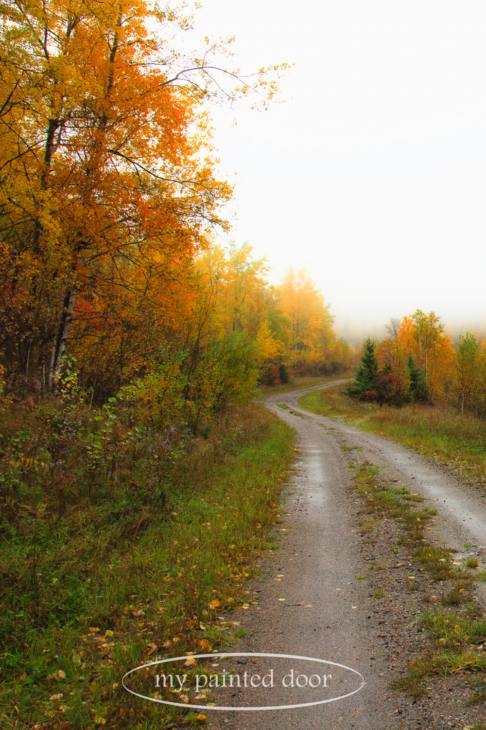 Northern Ontario walkabout - photography by Sue Sikorski