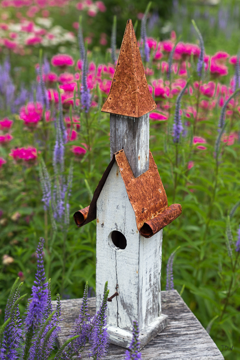 My Painted Door garden tour - Photography by Jan Whybourne.