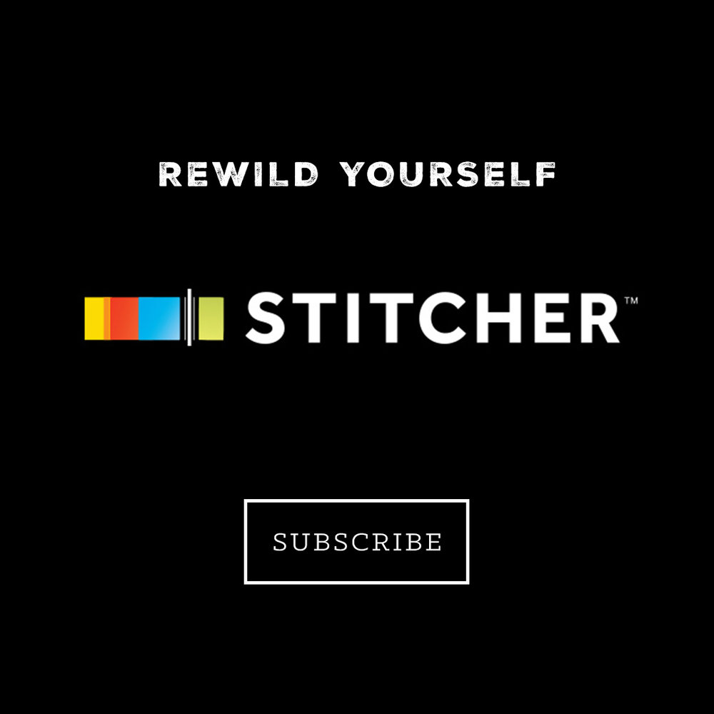 Stitcher Subscribe-2017.jpg