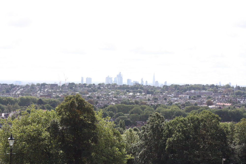 view-from-ally-pally