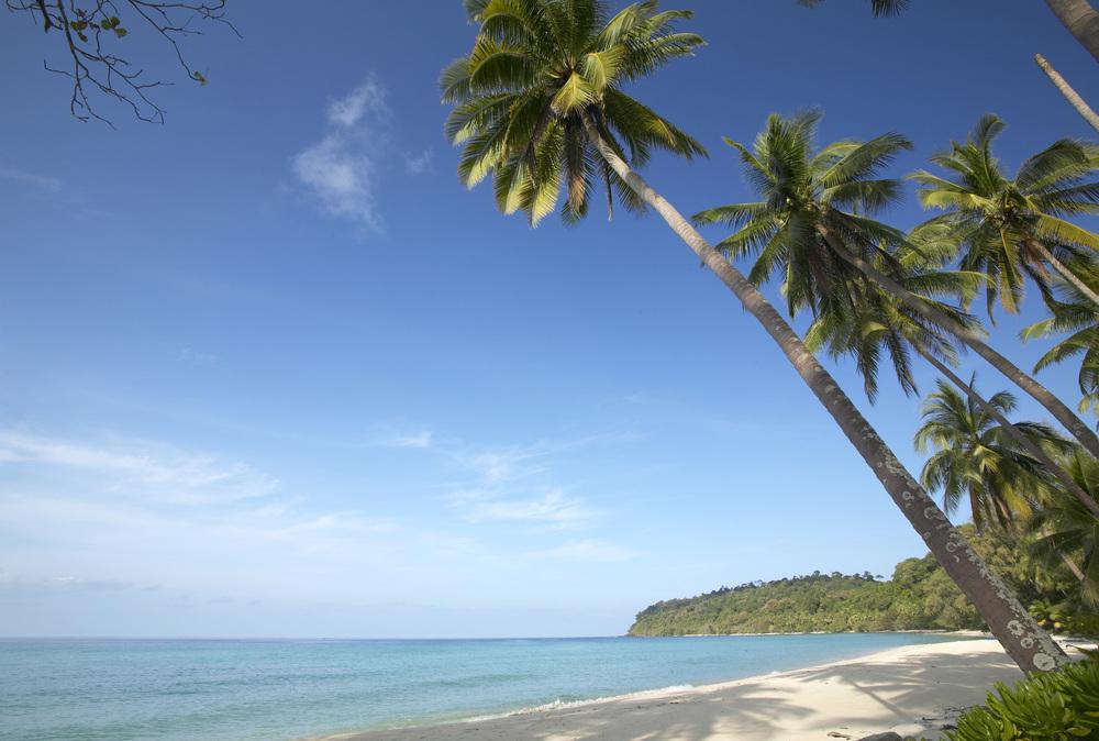 beach-ko-kood1_38_482.jpg