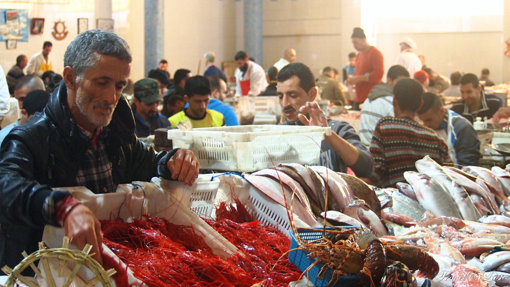 Freshly caught fish from the Atlantic Ocean and Mediterranean Sea in Tangier's famous fish market!