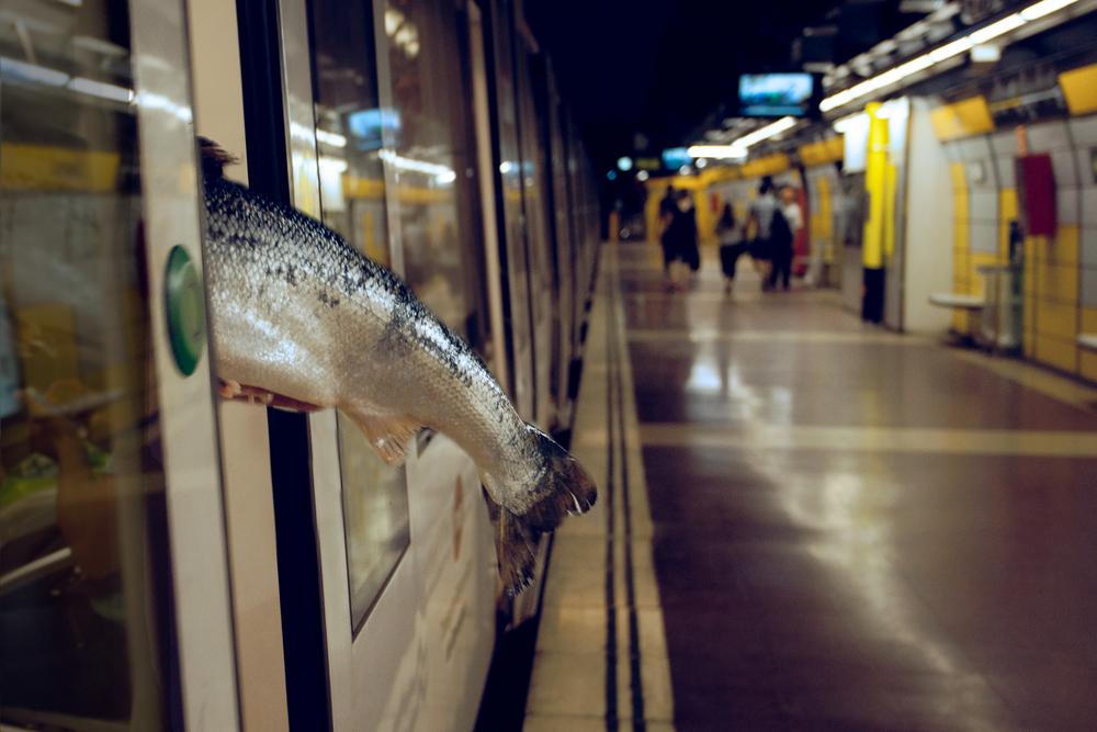 Fishy happenings on the Barcelona metro.