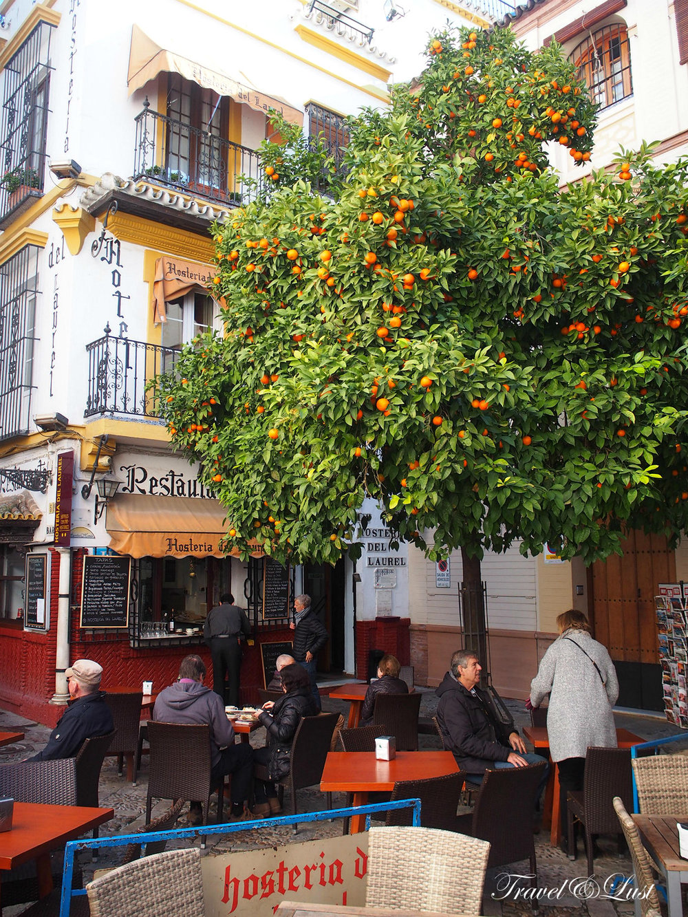 At Plaza de los Venerables nº 5 you can find the tasty in-house restaurant at Hostería Del Laurel.