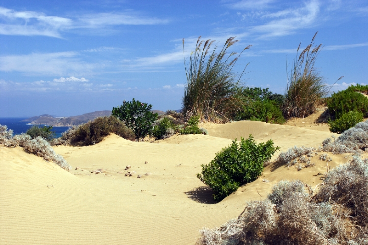 Lemnos sand dunes