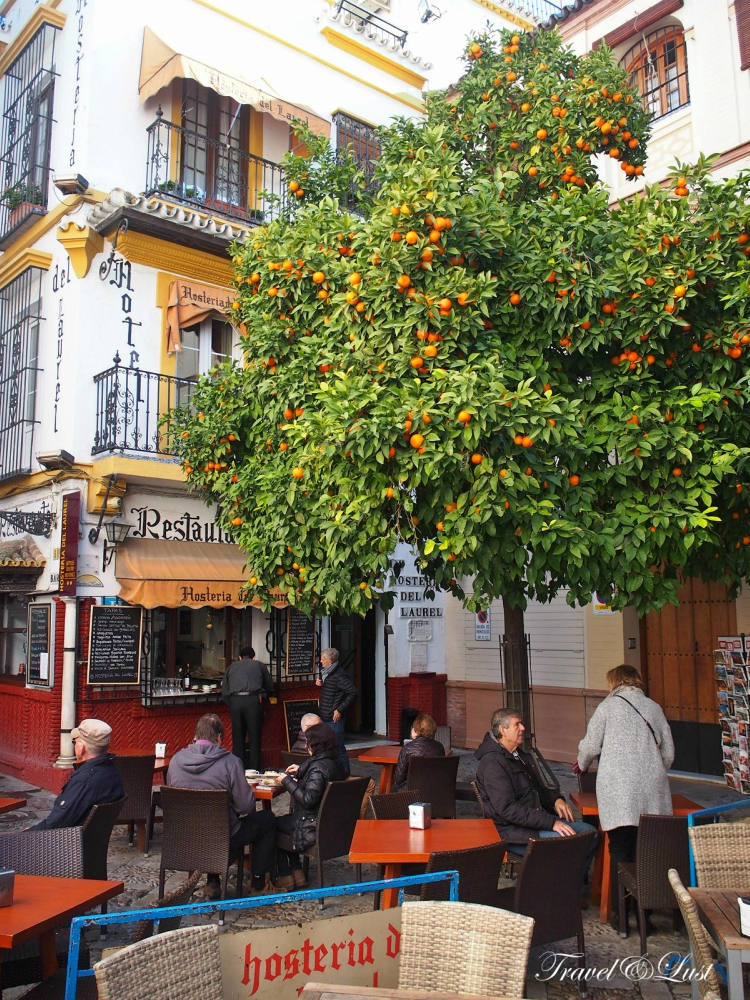 At Plaza de los Venerables nº 5 you can find the tasty in-house restaurant at Hostería Del Laurel.