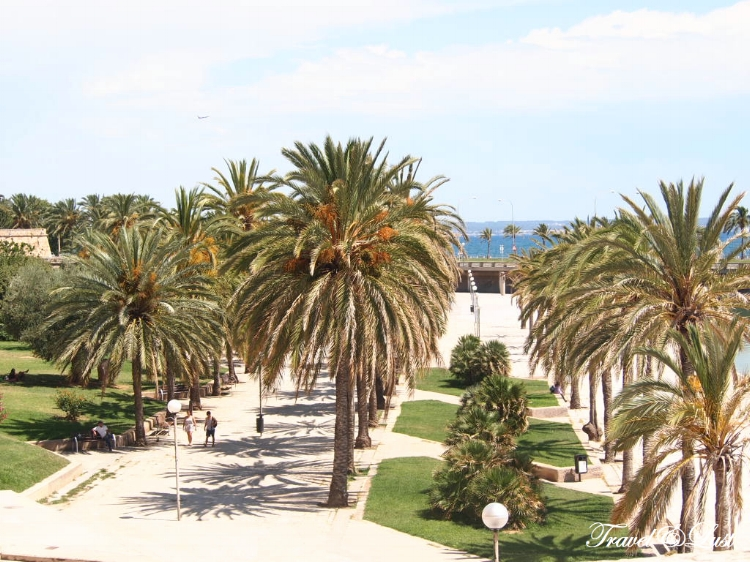 Palma de Mallorca is the capital and largest city of the autonomous community of the Balearic Islands in Spain. It is lively, intimate and full of life!