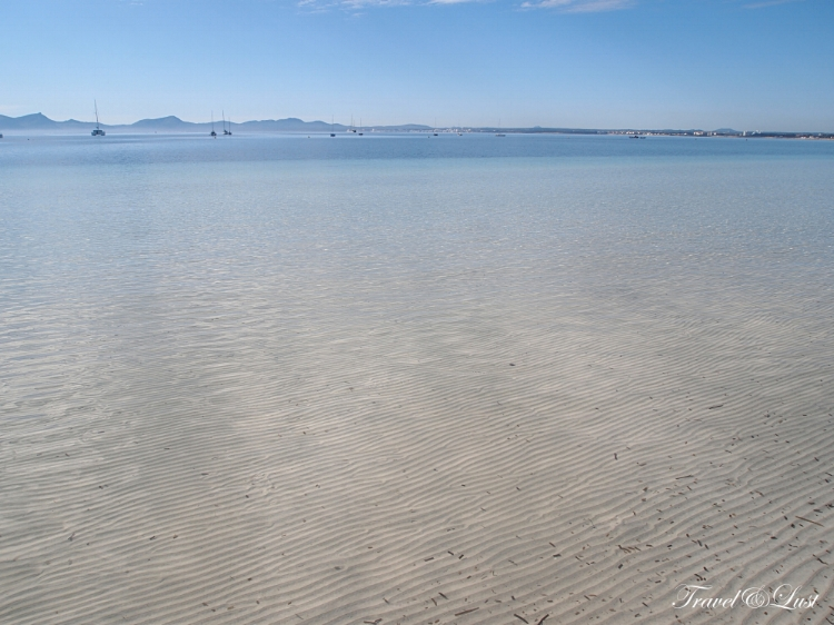 For a day away from the city, head to Port d'Alcúdia where there is a beautiful blue flag, fine white sand beach.