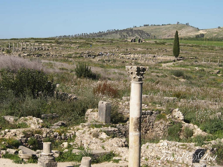 The remaining walls and columns of the Basilica of Volubilis.