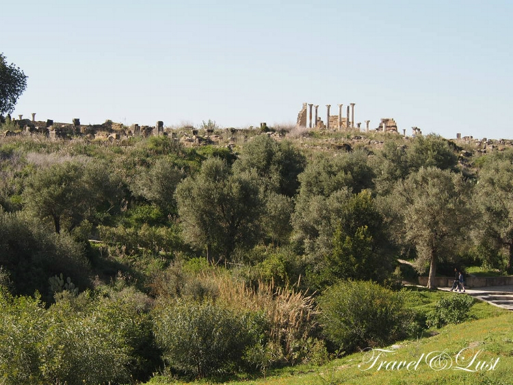 Archaeological Site of Volubilis - UNESCO World Heritage