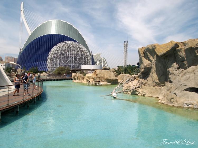 Marine Biodiversity in Valencia, Spain.