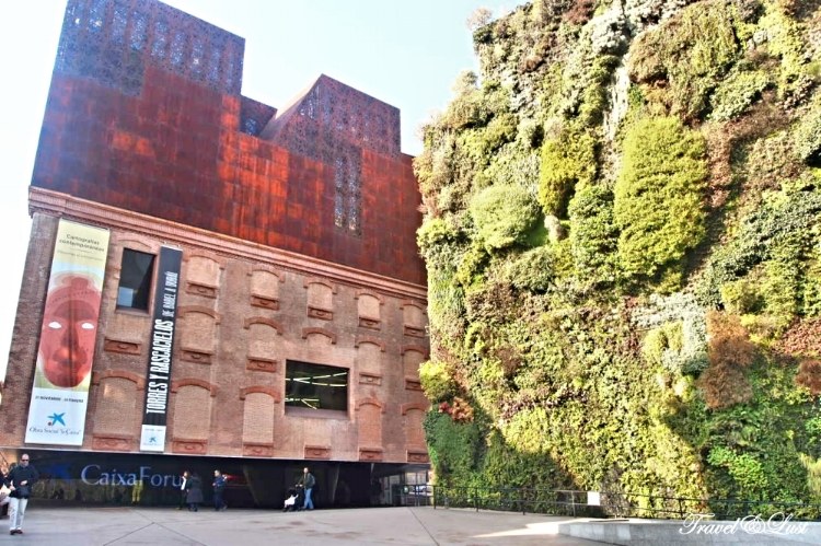 In the heart of Madrid´s cultural district lies one of the city´s greatest museums,, the Caixa Forum.