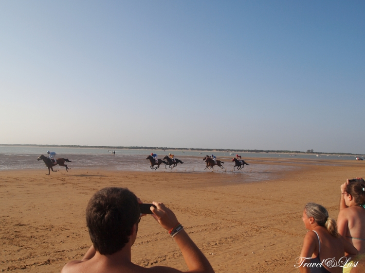 Beach Horse Racing 2014 in Sanlucar de Barrameda