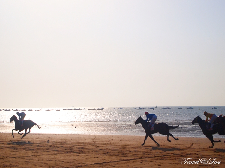 The horses gallop through the beach as fast as they can.
