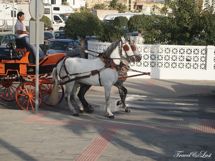 Horse and carriage ready for pick up and a ride around town.