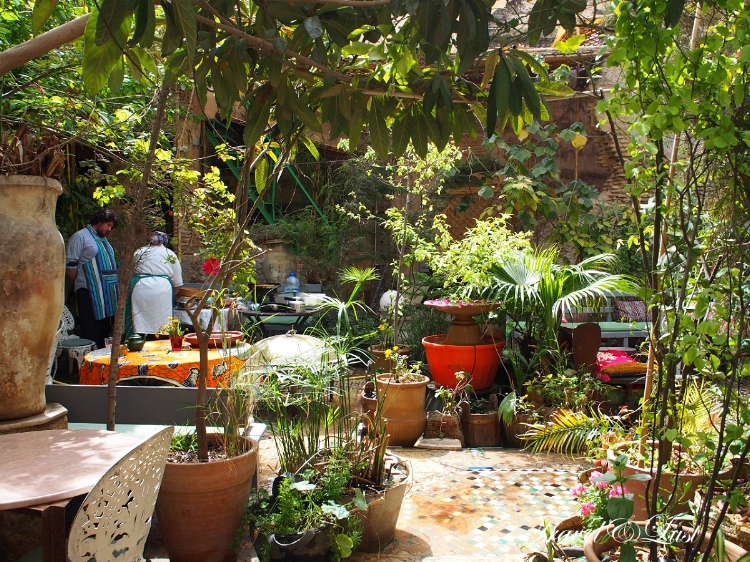The Ruined Garden Fez Medina
