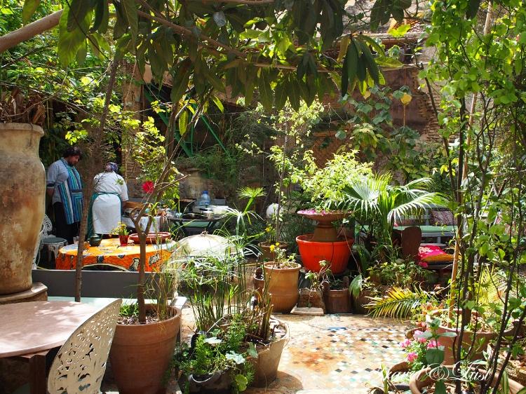 the ruined garden fez medina