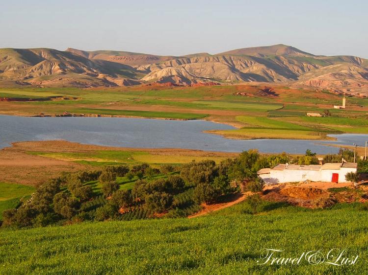 Sidi Chahed