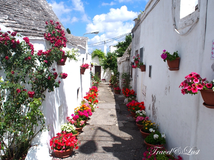 The centre of Alberobello houses some of the most beautiful trulli houses with flower pots.