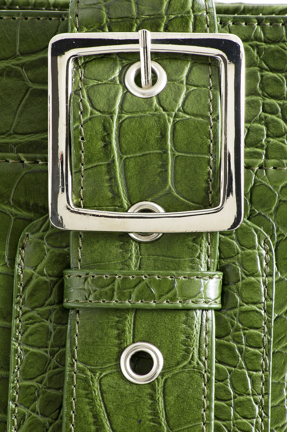 green lizard bag buckle.jpg
