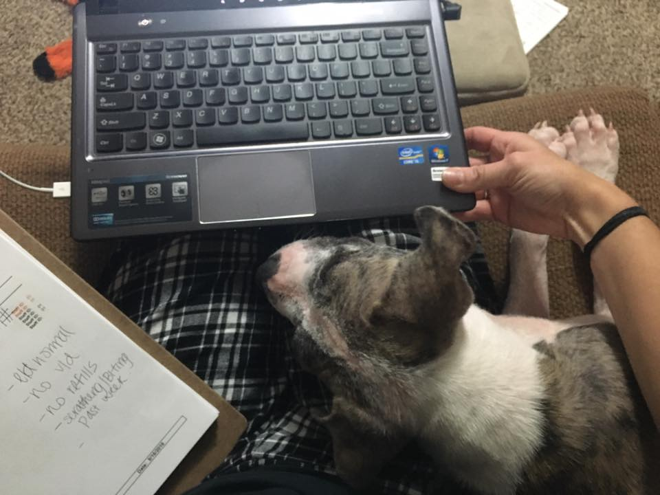 I can help you work from home